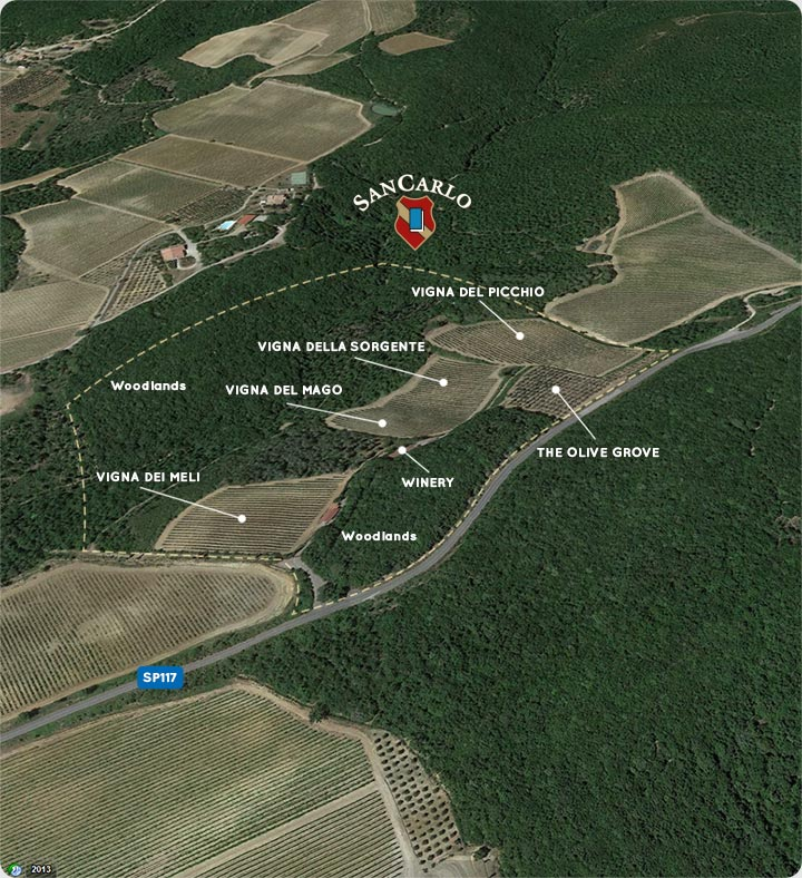 I tredici ettari dell'Azienda SanCarlo di Montalcino